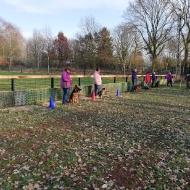 Erstes Hundetraining auf neuem Platz 02.03.2019